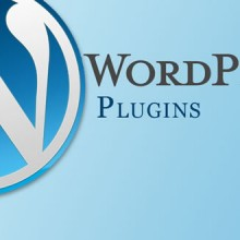 Dealing with the WordPress Plug-in Problems